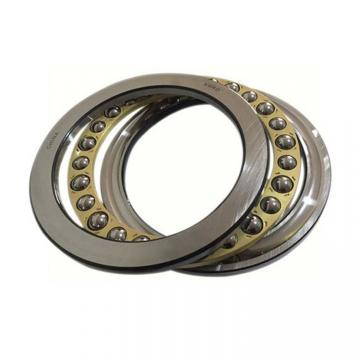 12 mm x 55 mm x 25 mm  INA ZKLF1255-2RS-PE Ball Thrust Bearings